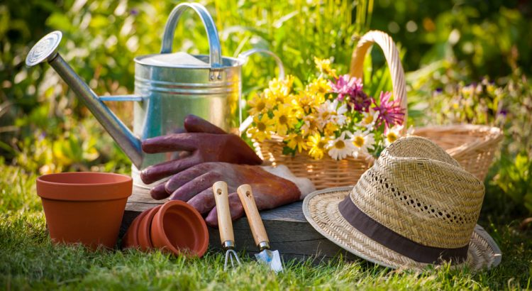 31b57f93d4a7b How gardening helps in mental health